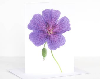 Photo greeting card. Floral greeting card. Flower greeting card. Geranium Photographic Greeting Card. Blank card