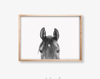 Horse Print,Horse Wall Art,Black and White Print,Equestrian Print,Modern Wall Art,Printable Art,Nursery Printable Art,Prints Wall Art