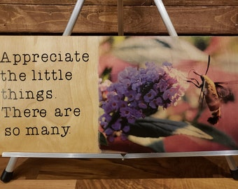 Hummingbird moth picture with saying