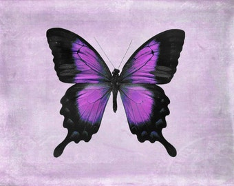 Butterfly Wall Art, Purple Wall Art, Wall Art Butterfly, Purple Butterfly, Wall Decor, Art Prints, Nursery Decor, Purple, Butterfly, Prints