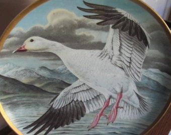 Water Birds of the World in Franklin porcelain great gift idea