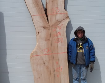 Hard Maple Slab #257