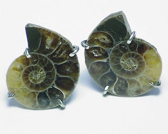 Ammonite Earrings, Fossil Earrings, Artisan Earrings, Handmade Earrings, Rustic Earrings, Valentine's Day Gift, Gift for Her, Birthday Gift