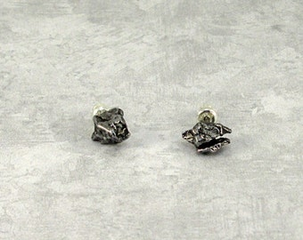 Campo del Cielo Meteorite Earring Sterling Silver Studs Secure Clasp - #D10