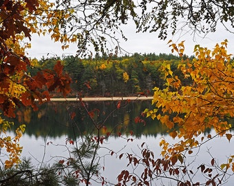 Through the Leaves at Walden Pond, Fall Photography, Fall Art, Fall Print, Fall Decor, Pond Photography, Pond Art, Pond Print, Pond Decor