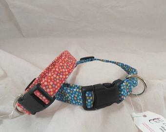 Dog Collar, Breakaway Collar, Cat Collar, Dog Collars, Small Dog Collar, Adjustable Collar, Pet Collar, Collier de chien, Collar de perro