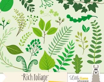 Botanical Clipart, Greenery, Eucalyptus Leaves, Ferns, Foliage Clip Art, Floral Clipart, Laurel Clip Art, Vines, Commercial Use