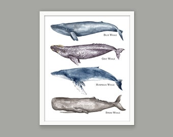 Whale Wall Art Poster, Watercolor Whale Painting, Blue Whale, Gray Whale, Humpback Whale, Sperm Whale, Bathroom Whales Art, Whale Print #903