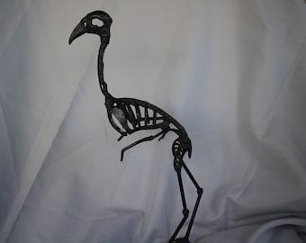 Skeleton bird