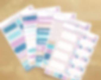 Anniversary Mystery Kit, Functional Mini Kit, Functional Planner Kit, EC Vertical Stickers, EC Weekly Kit, Gifts for Planner Girls