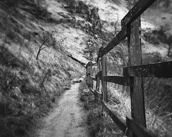 Path - Photo, fine art print
