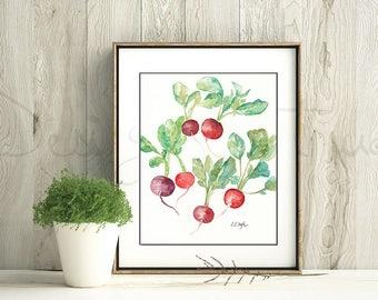Kitchen Wall Art, watercolor radishes, original watercolor painting, red decor, kitchen decor, watercolor wall art, vegetable art, botanical
