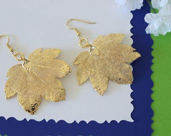 Silver Leaf Earrings, Maple Leaf, Real Leaf Earrings, Small Real Leaf Earrings, Full Moon Maple, Gold PLated leaf, Nature, LESM199