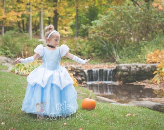 Cinderella dress for Birthday costume or Photo shoot Cinderella dress outfit Birthday dress Cinderella costume Princess dress for Birthday