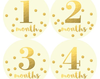 Gold Confetti Monthly Baby Milestone Stickers, Monthly Baby Stickers, Monthly Bodysuit Stickers, Baby Shower Gift, Months 1-12, Petite Folio