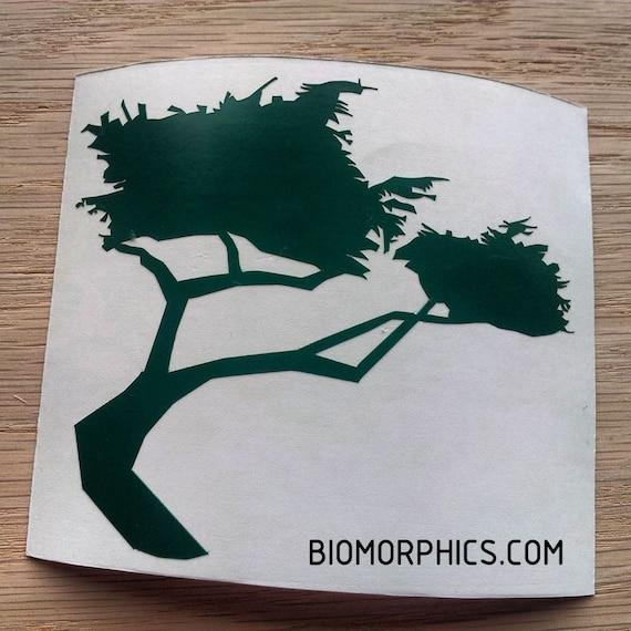 Monterey Cypress CNC Cut Vinyl Sticker
