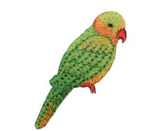 Yellow Headed Amazon Parrot Bird Applique Patch (Iron on)