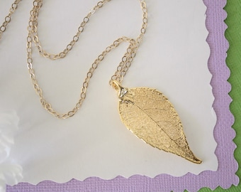 Gold Birch Leaf Necklace, Real Birch Gold Leaf, Real Birch Leaf Necklace, Birch, Gold Filled, LC162