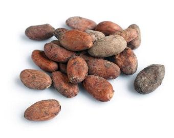 Cocoa Tree Seeds, Chocolate Seeds, 100 Cacao Seeds, Grow Your Own Chocolate Tree