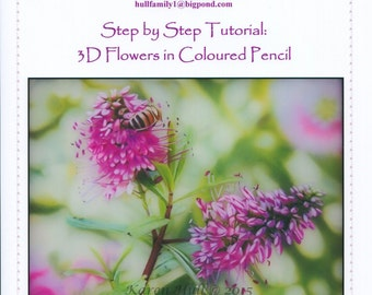 Step by Step Art Tutorial - 3Dimensional Flowers in Coloured Pencil