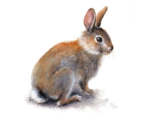 bunny rabbit watercolor painting art print nature animal