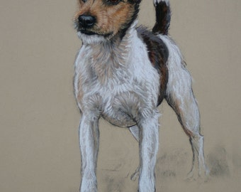 Jack Russell Terrier dog art dog lover gift dog gift LE art print from an original soft pastel available unmounted or mounted ready to frame