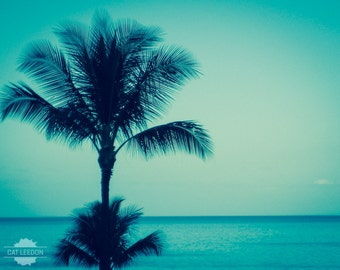 Palm Tree Blues - seaside nature photography print, beautiful Hawaii ocean blue