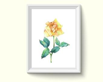 Rose Flower Watercolor Painting Poster Art Print P463