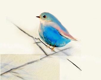 "The Junco Bird Is Never Alone, Set of 5  Folding cards 4x5""  w/ envelopes, one pattern per set, AlexandraNakos, Sandy Judd"