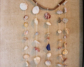 Driftwood and sea shell wall hanging or wind chime