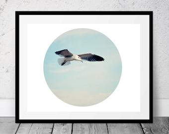 Printable Photography, Seagull, Digital Download, Beach Photography, Circle Art