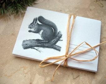 Squirrel 5 handmade paper envelopes