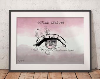 Anatomical eye print, optometry art print, gift for ophthalmologist optometrist ocular anatomy Optician office wall art optical art, Snellen