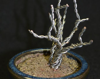 Deadwood Wire bonsai