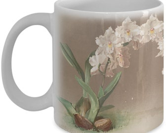 Coffee mugs w/ orchids flowers: botanical prints - Ontoglossum crispum