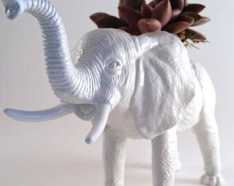 White Elephant Planter + Succulent \\ Animal Planter \\ Desk Accessory \\ Dorm  \\ Home Decor \\ Gift \\ Office Decor \\ Desk Plant