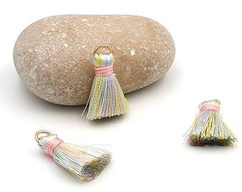 10 charms 22mm color-multicolored tassels highlight