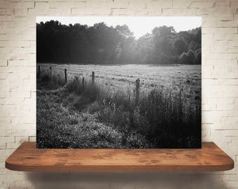 Bird on Fence Photograph - Fine Art Print - Black & White Photography - Wall Art - Wall Decor -  Farm Pictures - Farmhouse Decor