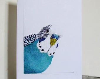 Blue Budgie Greetings Card, Cheeky Bird, Pet Budgerigar Watercolour, Humour, Pet Art, Budgie Art