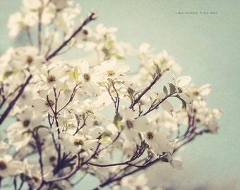 Nature Print or Canvas Art, Feminine White Flower Print, Pastel Spring Decor, Floral, Botanical Dogwood Print, Mint Aqua White.