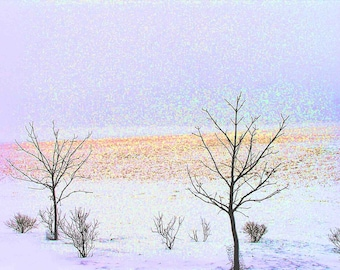 Sharing the Solitude 8x10 Fine Art Winter Snow Scene Landscape Photograph in Pastel Colors