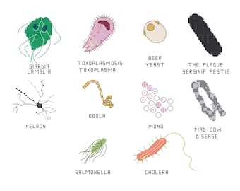 Cross Stitch Pattern -- Common Microbes, set 2