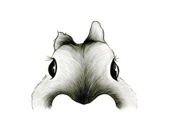 Cheeky Rabbit -- Woodland Animal Print // Pencil Illustration