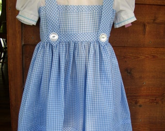 dorothy dress  size 4 child