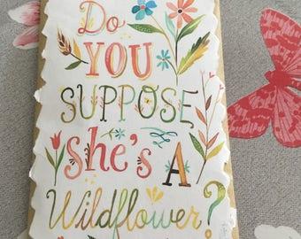 Alice in Wonderland Wildflower seeds