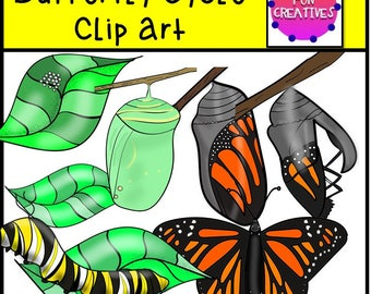 Butterfly Life Cycle Clip Art, Monarch Butterfly life cycle, Monarch life cycle clip art, Monarch digi clip,