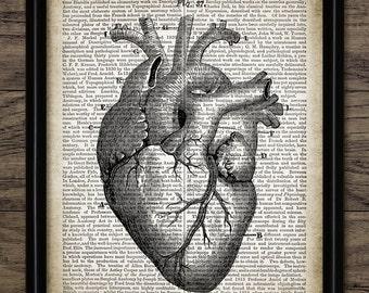 Corazón humano Vintage impresión en Diccionario fondo de la página - ilustración de anatomía del corazón humano - ciencia - solo imprime #1300 - descarga inmediata