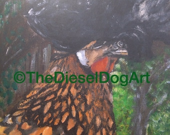Polish Golden Laced Hen 11x14 art print