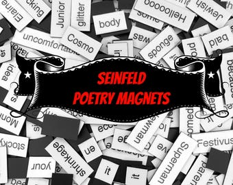 Seinfeld Magnetic Poetry / Fridge Magnets / Seinfeld Quotes / Seinfeld TV Show / Jerry Seinfeld / No Soup For You / George Costanza Quotes