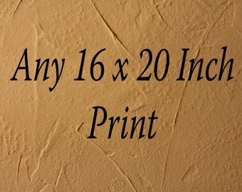 Any Photo In My Shop In a 16x20 Inch Size